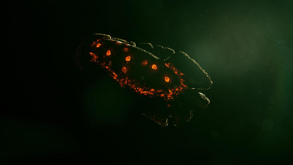 Une forme de vie étrange. Une graine ? Un oeuf ? Un mollusque ?